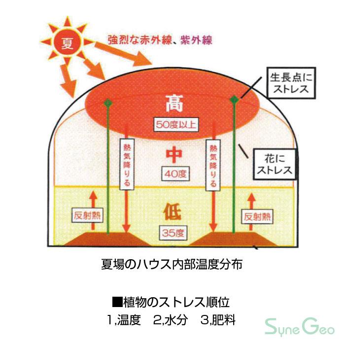 夏場のハウス内部温度分布