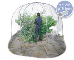 果樹ドーム2500Dエクストラ