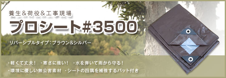 PROシート #3500